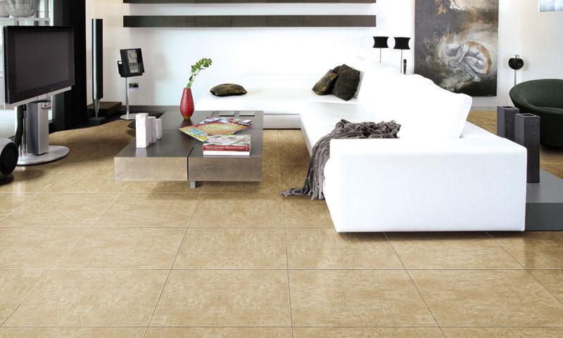 Gạch đồng chất (gạch granite) Đồng Tâm