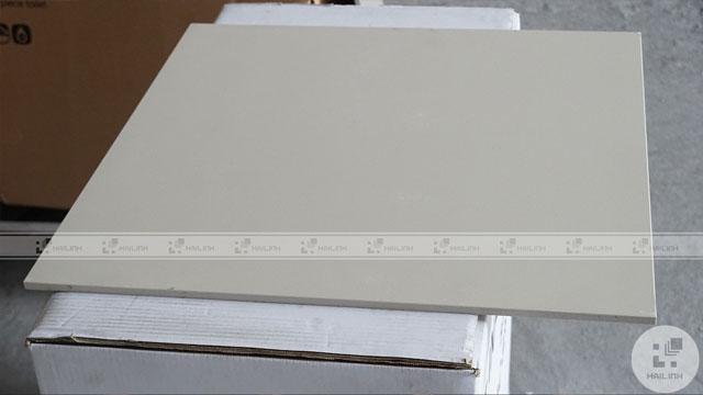 Gạch Taicera 60x60 G68025 2416-A43