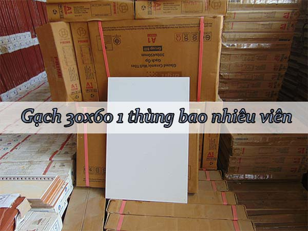 gạch 30x60 1 thùng bao nhiêu viên