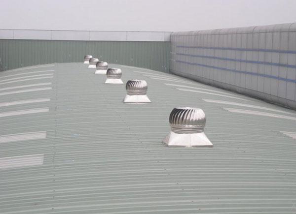 Có nên sơn chống nóng mái tôn 3